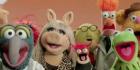 muppet140x70