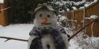 snowday140x70