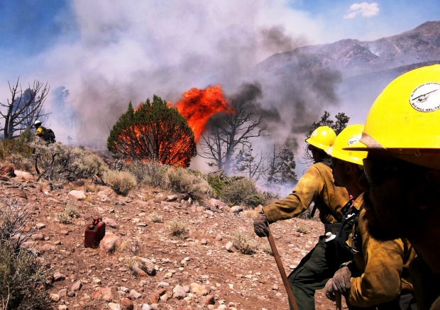 Lindon Pronto, Bison Fire in Nevada, July 2013
