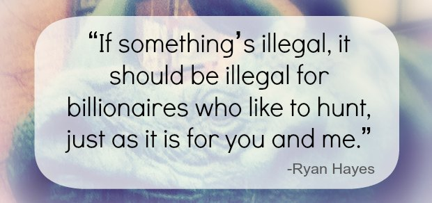 illegal-quote-ryan-hayes