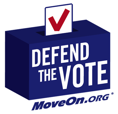 defend the vote small